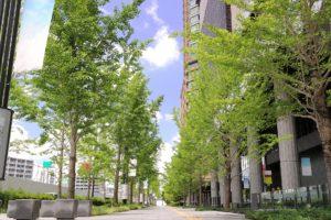 薬剤師として大阪で転職したいあなたに必要な情報まとめ